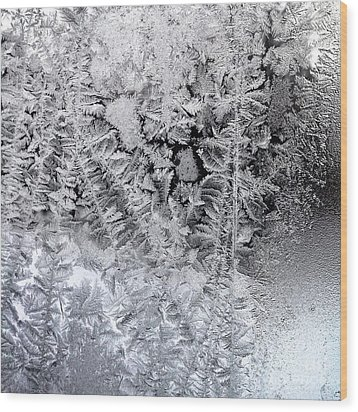 Frost Windowpane In Maine Number One Wood Print by Patricia E Sundik