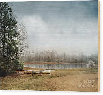 Frostbitten Wood Print by Jai Johnson