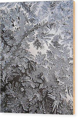 Frosted Glass Abstract Wood Print by Christina Rollo