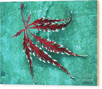 Frosted Japanese Maple Wood Print by Nina Silver
