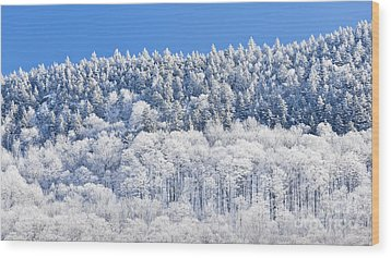 Frosted Mountainside Wood Print by Alan L Graham
