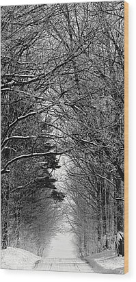 Frosted Steps II Wood Print by Sarah Boyd