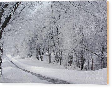 Frosted Trees Path Wood Print