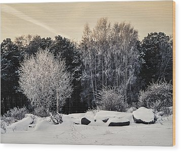 Frosted Trees Wood Print by Vladimir Kholostykh