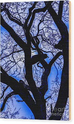 Frosty Blue Abstract Wood Print by Mitch Shindelbower