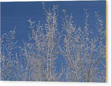 Frosty Blue Sky Wood Print