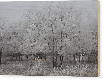 Frosty Day Wood Print