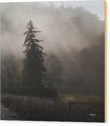Frosty Foggy Morning Wood Print
