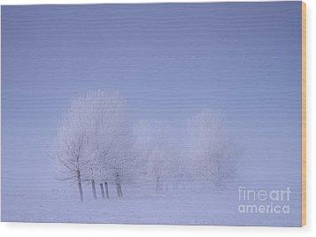 Frosty Friends Wood Print by Dan Jurak