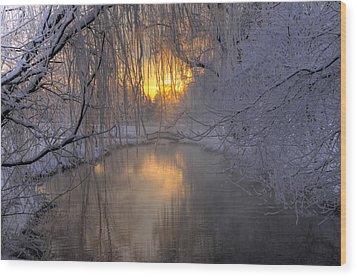 Frosty Morn 2 Wood Print by Dan Myers