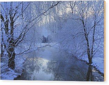 Frosty Morn Wood Print by Dan Myers