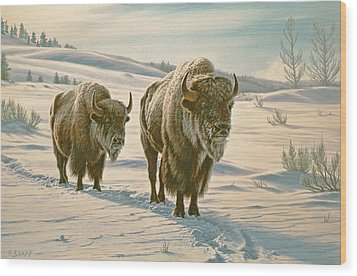 Frosty Morning - Buffalo Wood Print