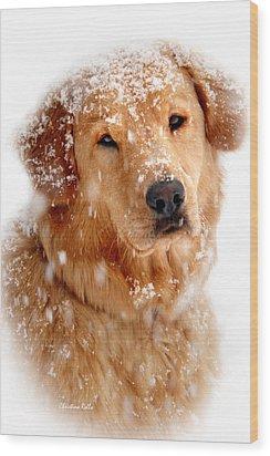 Frosty Mug Wood Print by Christina Rollo