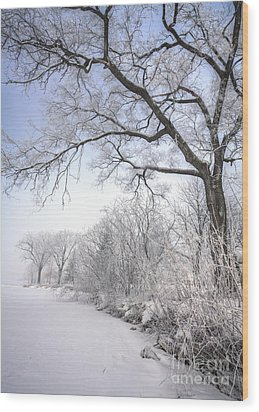 Wood Print featuring the photograph Frosty Shoreline by Kari Yearous