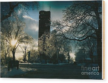 Frosty Sunrise At Tower Park Wood Print