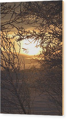 Wood Print featuring the photograph Frosty Sunrise by Dacia Doroff