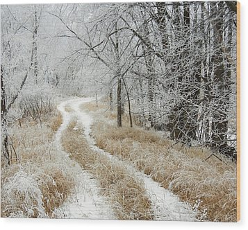Wood Print featuring the photograph Frosty Trail 2 by Penny Meyers
