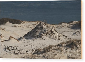 Frosty White Dunes Wood Print by Adam Jewell