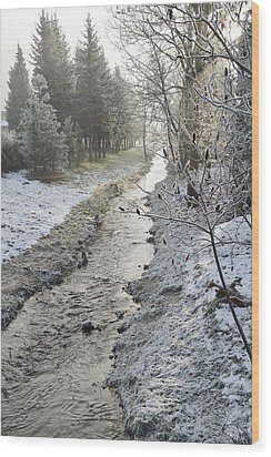 Wood Print featuring the painting Frozen Air by Felicia Tica