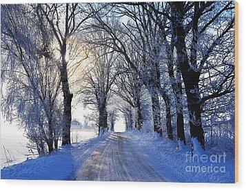 Frozen Alley Wood Print
