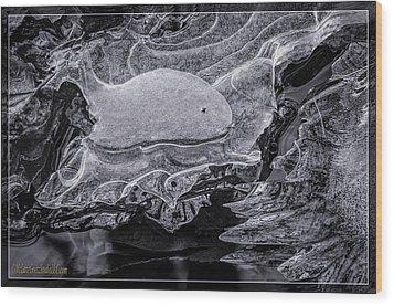 Frozen Beached Whale Wood Print by LeeAnn McLaneGoetz McLaneGoetzStudioLLCcom