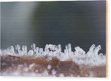 Frozen City Wood Print by Shelby Waltz