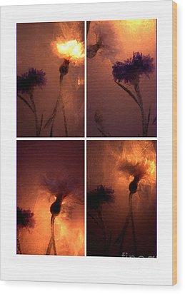Frozen Flowers Collage Wood Print by Randi Grace Nilsberg