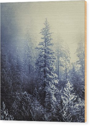 Frozen In Time Wood Print by Melanie Lankford Photography
