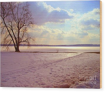 Frozen Lake II Wood Print by Silvie Kendall