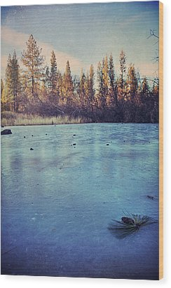 Frozen Wood Print by Laurie Search