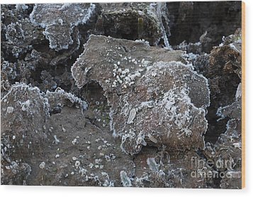 Frozen Mud Wood Print
