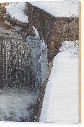 Frozen Over With Ice Wood Print by Jenna Mengersen