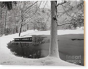 Frozen Pond 2014 Wood Print