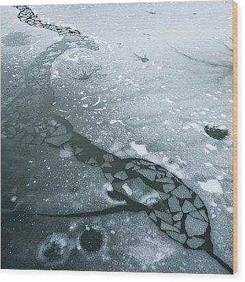 Frozen Pond Wood Print by Gary Eason