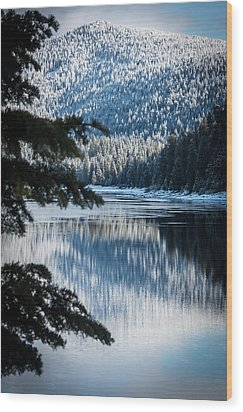 Frozen Reflection Wood Print by Jan Davies