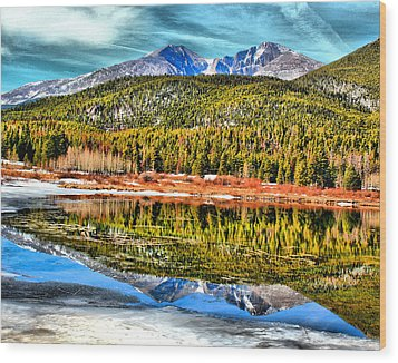 Frozen Reflection On Lily Lake Wood Print by Rebecca Adams