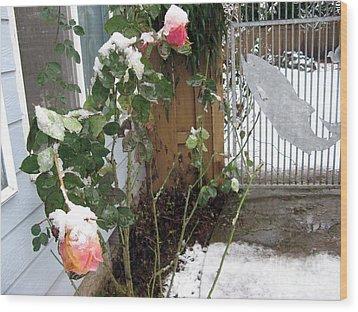 Frozen Rose Wood Print by Marlene Rose Besso