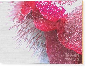 Frozen Rose Wood Print by Randi Grace Nilsberg