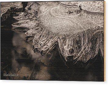 Frozen Sun Wood Print by LeeAnn McLaneGoetz McLaneGoetzStudioLLCcom