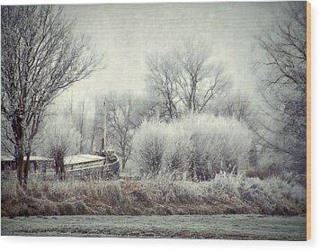 Frozen World Wood Print by Annie Snel
