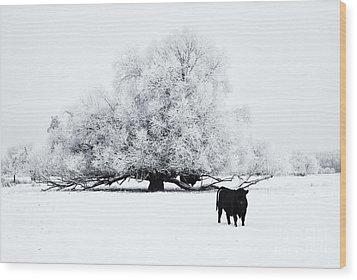 Frozen World Wood Print by Mike  Dawson