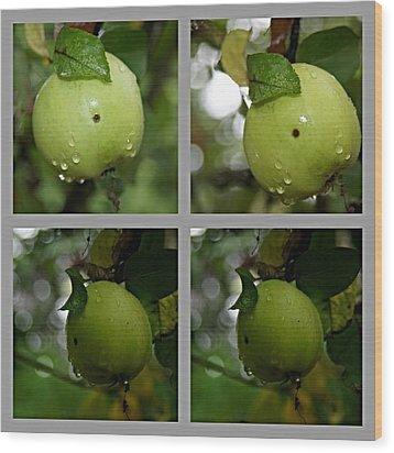 Frucht  Wood Print