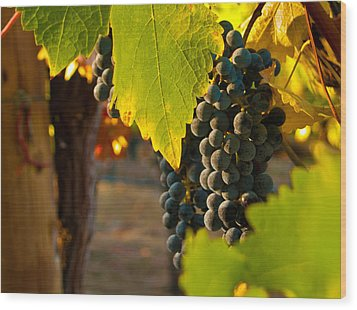 Fruit Of The Vine Wood Print by Bill Gallagher