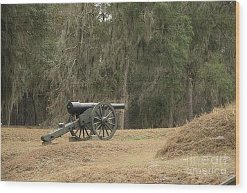 Ft. Mcallister Cannon 2 In Color Wood Print