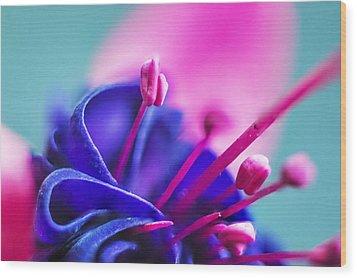 Fuchsia Detail Wood Print