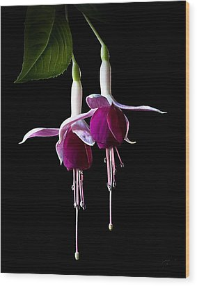 Wood Print featuring the photograph Fuchsias by Endre Balogh