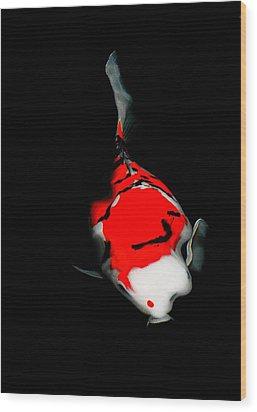 Fukushima1 Wood Print