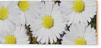 Full Bloom Wood Print by Jon Neidert