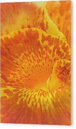 Full Color Canna Wood Print