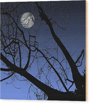 Full Moon And Black Winter Tree Wood Print by Ben and Raisa Gertsberg